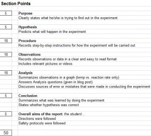 rate-lab-rubric