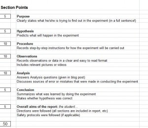 rubric-for-lab-report